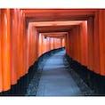 朝いなり 伏見稲荷大社 京都 [2018 Sep.]  #kyoto  #Japan #tourism
