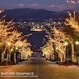 函館で最も美しい坂「八幡坂」。街路樹がライトアップされる秋冬は特に綺麗です!坂の上からは同じくライトアップされた海上に浮かぶ旧青函連絡船「摩周丸」やベイエリアの夜景が見渡せます。