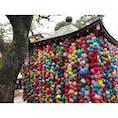 八坂庚申堂 京都 [2018 Sep.]  #kyoto #japan #tourism