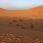 モロッコ🇲🇦サハラ砂漠の日の出、ラクダに乗って🐪