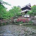 岡山県総社市にある宝福寺。室町時代に少年だった雪舟が修行を積んだとされる禅寺です。雪舟は修行よりも絵を描いてばかりいたそうですが、描きたくなるのも無理もないと思うほどに美しいお寺です。座禅体験もできますよ!