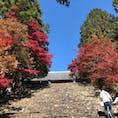 京都 神護寺🍁🍂 天気がとってもよくて、紅葉と空のコントラストがバッチリ〜✨ ほんまにきれいやったなぁ☀️