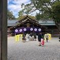 三重県 猿田彦神社 七五三の子供がいっぱいいて可愛かった。