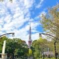 久しぶりの東京タワー。 外国人の方をふくめ、観光客がたくさんいました。