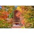 奈良の談山神社