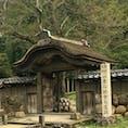 福井県 きちんと整備され、ガイドも居て見応えのある遺跡
