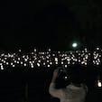2018.8.9 奈良 燈花会 #ならまち #奈良 #燈花会 #奈良公園