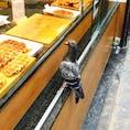 ブリュッセルのVitalgaufre🍴ベルギーワッフルのお店🇧🇪1つ2.45€でめっちゃ美味しい😍鳩も興味津々🕊