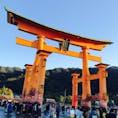 厳島神社 干潮時の鳥居!