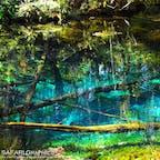 北海道清里町にある「神様からの贈り物」と称されている神の子池。世界第2位の透明度を誇る神の湖「摩周湖」の伏流水が溜まってできたものと言われています。水底までハッキリ見える透明度とブルーのグラデーションがとにかく美しい神秘的な池です✨