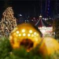 冬がやってくる❄️  東京ドームシティー   #イルミネーション