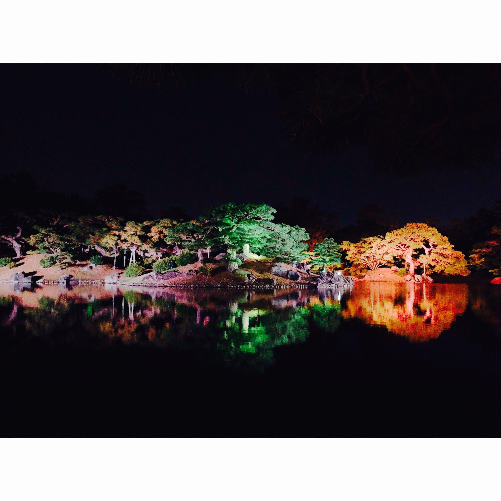 栗林 公園 紅葉 ライト アップ