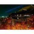 【京都】 清水寺 × 紅葉🍁   2015年に撮影した清水寺です。 2020年3月まで改修工事をしているので 現在この姿は見られません。 改修後が楽しみですね^_^
