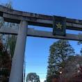 12月14日の京都、晴明神社にて。 紅葉はピークを過ぎていましたが、天気にも恵まれ、感謝をしながら後にしました。