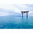 白髭神社 滋賀県 湖に浮かぶ鳥居