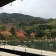 2018.11 天龍寺 庭園 紅葉は色付きはじめでした。