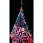 クリスマスイルミネーション2018 in SAPPORO  #大通り公園のイルミネーション✨