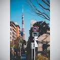 東京の日常