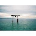 #滋賀県#白髭神社#琵琶湖