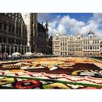 ベルギー🇧🇪 ブリュッセル  グランプラス  2年に一度、世界遺産のグランプラスで4日間だけ 開催される花の祭典フラワーカーペット。  77m×24mの広さに生花がびっしり敷き詰められていて それはそれは美しかったです。  チケットを購入すると市庁舎のバルコニーから 全体を観ることができるのでオススメです◎   #次回は2020年8月