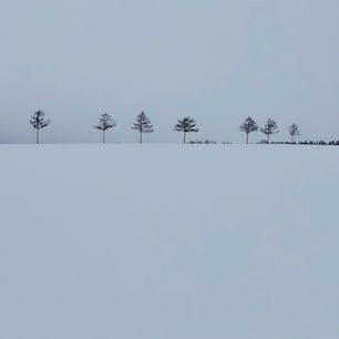 メルヘンの丘めまんべつ@北海道