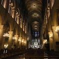 #フランス #パリ #ノートルダム大聖堂