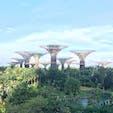 シンガポール ガーデンズ•バイ•ザ•ベイ SF映画のような未来的な植物公園