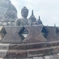 インドネシア・ジャワ島はジョグジャカルタへ✈️ 世界三大仏教遺跡の1つであるボロブドゥール遺跡です!
