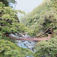 かずら橋🚩徳島県