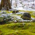 [2019/02] 京都府、三千院。 毎年恒例「初午大根焚き」が2月に行われ、巨大な大根が参拝者に無料でふるわれます(美味しかった^^)。 地蔵と苔が有名な当院ですが、私が参拝した時は雪が積もっており、なんとも幻想的な風景でした。 感動しました。  ところで寝そべっているように見えるこの地蔵、本当に可愛いですね。(地蔵に可愛いという表現を使用して良いのか分かりませんが...)