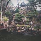 豫園@上海