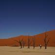 #ナミブ砂漠 #デッドフレイ  死の沼  木も生きれない過酷な場所  ただただ暑い