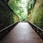 神奈川県/横須賀/猿島 旧海軍の要塞の名残か、レンガ積みのトンネルや砲台跡などが残っていて、歩いているとまるで探検しているかのよう。