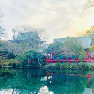 東京 井の頭恩賜公園