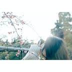 #福岡 #北九州 #白野江植物園