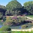 日本三大庭園の一つ、岡山県後楽園。例年2月上旬〜3月上旬には約100本の紅白の梅林が見頃を迎えます。2019年3月1日〜3月3日までは「春のおもてなし」も開催中!春を感じる花旅にぴったりのスポットです🌸