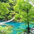 静岡🏞夢の吊り橋